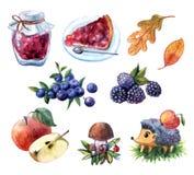 Wręcza patroszoną akwarelę ustawiającą ilustracja z owoc i berrie royalty ilustracja