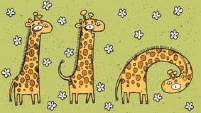 Wręcza patroszoną grunge ilustrację trzy żyrafy na kwiecistym backg Zdjęcia Stock