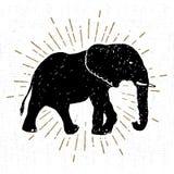Wręcza patroszoną ikonę z textured słonia wektoru ilustracją Obrazy Stock