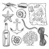 Wręcza patroszone wektorowe ilustracje - kolekcja seashells i m ilustracji