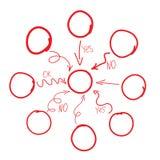 Wręcza patroszonego diagram lub flowchart, ręka rysunek Obrazy Royalty Free