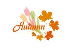 Wręcza patroszonego jesieni literowanie, barwiony jesieni pojęcie odizolowywający na białym tle, colour jesień ilustracja royalty ilustracja