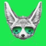 Wręcza patroszonego portret fenek Fox z lustrzanymi okularami przeciwsłonecznymi ilustracja wektor