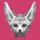 Wręcza patroszonego portret fenek Fox z szkłami i łęku krawatem royalty ilustracja