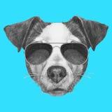 Wręcza patroszonego portret Jack Russell z okularami przeciwsłonecznymi royalty ilustracja