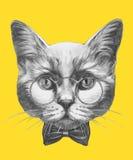Wręcza patroszonego portret kot z szkłami i łęku krawatem ilustracja wektor