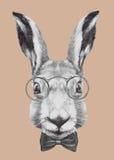 Wręcza patroszonego portret królik z szkłami i łęku krawatem royalty ilustracja