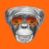 Wręcza patroszonego portret małpa z lustrzanymi okularami przeciwsłonecznymi ilustracja wektor