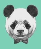 Wręcza patroszonego portret panda z szkłami i łęku krawatem ilustracja wektor