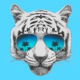 Wręcza patroszonego portret tygrys z lustrzanymi okularami przeciwsłonecznymi ilustracji
