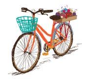 Wręcza patroszonego tintage bicykl z kwiatami w tylni koszu royalty ilustracja