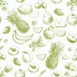 Wręcza patroszonego wektorowego bezszwowego wzór z owoc i royalty ilustracja