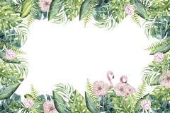 Wręcza patroszonej akwareli tropikalnego invirtation backgraund flaming Egzot różane ptasie ilustracje, dżungli drzewo, Brazil ilustracji