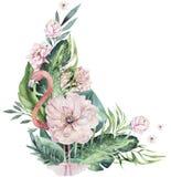 Wręcza patroszonej akwareli tropikalnych ptaki ustawiających flaming z liśćmi Egzot różane ptasie ilustracje, dżungli drzewa liść royalty ilustracja