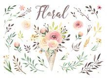 Wręcza rysunek odizolowywającej boho akwareli kwiecistą ilustrację z liśćmi, gałąź, kwiaty Artystyczna greenery sztuka wewnątrz ilustracja wektor