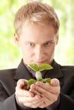 wręcza smal kostium jego mienia mężczyzna roślinie Obraz Stock
