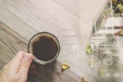 Wręcza trzymać filiżankę lub herbaty, szklanej wazy kwiatu susi ziele, dalej Fotografia Stock