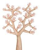 wręcza drzewa Obrazy Stock
