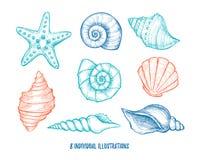 Wręcza patroszone wektorowe ilustracje - kolekcja seashells maria Fotografia Stock