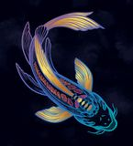 Wr?cza patroszonego etnicznego rybiego Koja karpia - symbol harmonia, m?dro?? Odizolowywaj?ca wektorowa ilustracja Duchowa sztuka ilustracji