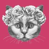 Wręcza patroszonego portret kot z kwiecistym kierowniczym wiankiem royalty ilustracja