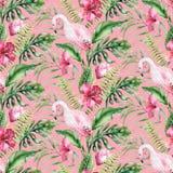 Wr?cza patroszonej akwareli tropikalnego ptasiego flaminga bezszwowy wz?r Egzot r??ane ptasie ilustracje, d?ungli drzewo, Brazil royalty ilustracja
