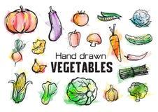 Wręcza patroszonych akwareli warzywa i owocowego kolekcja set royalty ilustracja