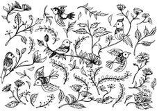 Wręcza Patroszonych kwiecistych ornamenty z kwiatami i ptakami Zdjęcie Royalty Free