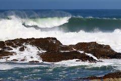 Wrażenia wybrzeże na przylądku Dobra nadzieja, Południowa Afryka Zdjęcia Stock