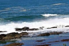 Wrażenia wybrzeże na przylądku Dobra nadzieja, Południowa Afryka Zdjęcie Royalty Free