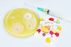 Wrażliwość dla bakteryjnego przyrosta na Muler agaru środkach c (MU agar) Obrazy Stock