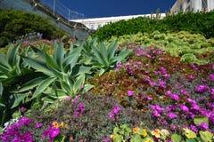 Wrażenia od wyspy Alcatraz w zatoce San Fransisco, Kalifornia usa Zdjęcie Royalty Free
