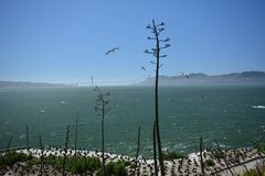 Wrażenia od wyspy Alcatraz w zatoce San Fransisco, Kalifornia usa Zdjęcie Stock