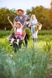 Wracać od ogródu w wheelbarrow zdjęcie stock