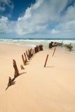 Wrack auf australischem Strand während des Tages Lizenzfreie Stockfotos