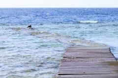 Wracke des alten versunkenen hölzernen Piers auf dem Roten Meer Stockbilder