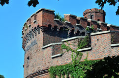 Wrangel Tower - fortification of Koenigsberg. Kaliningrad, Russi Royalty Free Stock Images