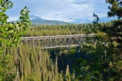 wrangell för st för elias nationalparkpreserve fotografering för bildbyråer