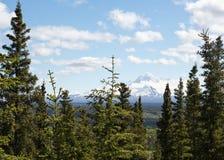 Wrangell St. Elias Stock Photo