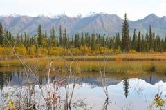 Wrangell-St. Elias National Park Royalty Free Stock Photos