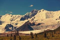 Wrangell-St.Elias NP Royalty Free Stock Image