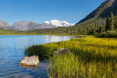 Wrangell-StElias NP Stockfotografie