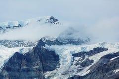 Wrangell-StElias NP royaltyfri foto