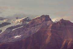 Wrangell-StElias NP royaltyfria foton