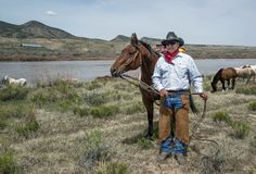 Wrangler del cowboy, Johnny Garcia, stante con il suo cavallo di baia al fiume di Yampa sul grande azionamento americano annuale  immagini stock libere da diritti