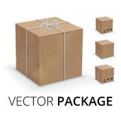Wraped box Royalty Free Stock Photo
