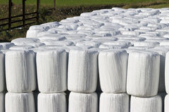 Wrapped bale silages Royalty Free Stock Photos