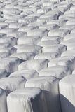 Wrapped bale silages Stock Photo