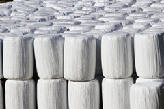 Wrapped bale silages Royalty Free Stock Image