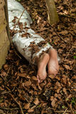 Wrapped barefoot corpse lying in the woods Royalty Free Stock Images